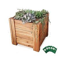 Chậu gỗ Vuông GREENHOME- Dễ lắp đặt, chịu nước tốt-D40xR40xC40cm-TẶNG KÈM 5 GÓI DƯỠNG HOA TƯƠI LÂU