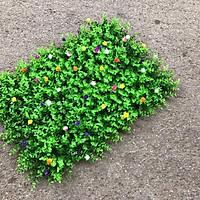 Bộ 5 tấm cỏ tai chuột đính hoa