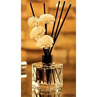 Lọ hoa tinh dầu thủy tinh Aroma Fresh Air 150ml