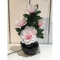 Bình hoa đèn led sợi quang đổi màu - bình hoa trang trí - bình hoa hồng cắm điện 220V - BH062