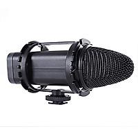 Phụ Kiện Âm Thanh | Giá Treo Đàn Hồi BOYA- Boompole, Windshield & Suspension system kit BY-C03 - Hàng Chính Hãng