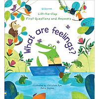 Sách Usborne Lift-the-Flap First Questions and Answers What are feelings?