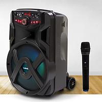 Loa Kẹo Kéo Bluetooth Mini Di Động, Bass 25cm, Công Suất 30W Mobell 1021A Kèm 1 Micro Không Dây - Chính Hãng
