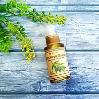 Dầu oliu dưỡng ẩm, dưỡng da, dưỡng tóc Ecolife - Olive Oil 75ml