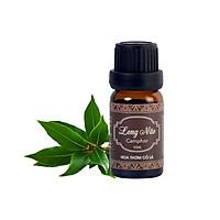 Tinh Dầu Long Não - Camphor Essential Oil 10ml - Hoa Thơm Cỏ Lạ