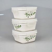 Bộ 3 hộp Sứ đựng thức ăn Happycook HCC03 Tặng Túi Đựng Giữ Nhiệt Cao Cấp, hoa văn màu ngẫu nhiên-Hàng chính hãng
