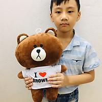 Gấu bông cao cấp Brown size nhí