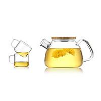 Bộ bình lọc trà thủy tinh Samadoyo NA923 900ml