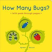 Sách How Many Bugs?