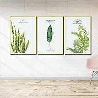 Bộ 3 tranh canvas treo tường Decor Hoa lá phong cách scandinavian - DC069