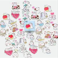 Hộp 46 Miếng Dán Sticker Trang Trí Hamster 2