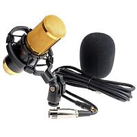 MIC thu âm BM900 và Sound Card V8  hát live stream với đầy đủ chức năng chỉnh giọng âm thanh + Bộ giá đỡ điện thoại 2 kẹp để bàn kèm đèn led - Hỗ trợ livestream hiệu quả (giao màu ngẫu nhiên)