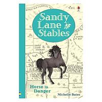 Usborne Sandy Lane Stables Horse in Danger