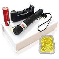 Đèn Pin Laser - 303 (Kèm Miếng Dán Điện Thoại Mèo Vàng Như Hình)