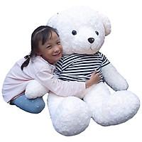 Gấu Bông to 1m2  | Gấu Teddy Trắng áo kẻ làm quà tặng ý nghĩa