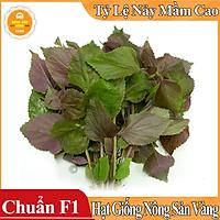 Hạt giống Rau Tía Tô ( Gói 2 Gram ) - Nông Sản Vàng