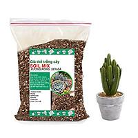 Đất trồng sen đá trộn sẵn siêu sạch-Trồng xương rồng, sen đá-Cung cấp đầy đủ chất dinh dưỡng cho cây trồng- TÚI 2KG