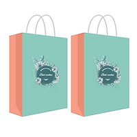 Túi đựng quà, túi giấy cán mờ T11 - combo 2 túi (409)