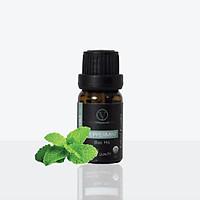 Tinh Dầu Hữu Cơ Bạc Hà | Organic Organic Peppermint Oil | Tinh dầu Nhập Khẩu USDA - Vnspecial Oils (10ml)