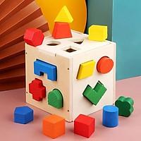 Hộp gỗ đồ chơi trí tuệ thả hình khối (15 hình khối đa sắc)
