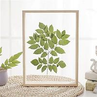Khung ảnh để bàn trang trí nội thất phong cách Hàn Quốc, khung tranh 2 mặt dùng ép hoa cỏ khô loại A4 KA-04