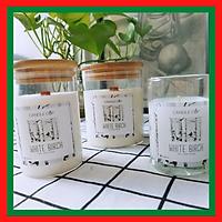 Nến Thơm Candle Cup - Mùi WHITE BIRCH
