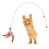 Cần câu mèo dây thép có chuông và lông vũ