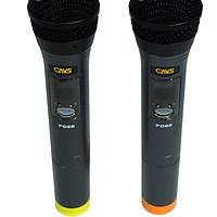 Micro karaoke CAVS PG88 hàng chính hãng