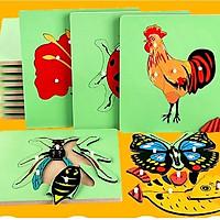 Bộ 5 tranh ghép giáo cụ Montessori