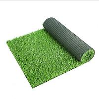 Tấm cỏ nhựa nhân tạo dày, cao cấp 1m x 0,5m