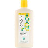 Dầu gội làm bóng tóc Sunflower Citrus Brilliant Shine Shampoo Andalou Naturals 340ml