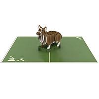Thiệp 3D pop up Chó Corgi