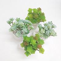 Cây giả, chậu cây sen đá nở hoa mini trang trí bàn làm học, bàn làm việc, kệ tủ độc đáo SD-01