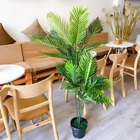 Cây Giả Cây Dừa 1M4 Lá Nhựa