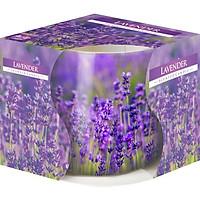 Ly nến thơm tinh dầu Bispol Lavender 100g PTT024788 - cánh đồng oải hương