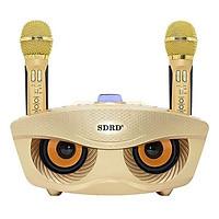Loa kẹo kéo karaoke bluetooth SDRD SD-306 F2 (Phiên bản 2) kèm 2 mic không dây - Hàng nhập khẩu