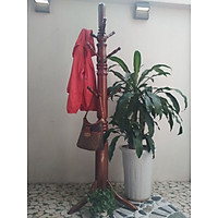 Treo móc quần áo dạng cây