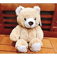 Gấu Bông Teddy Cao Cấp OSSSO38 38cm