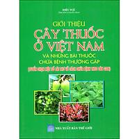 Giới Thiệu Cây Thuốc Ở Việt Nam Và Những Bài Thuốc Chữa Bệnh Thường Gặp