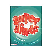 Super Minds 3 - Workbook