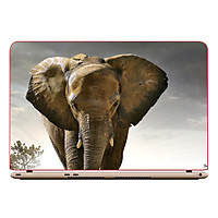 Miếng Dán Decal Laptop Animal DCLTDV 270