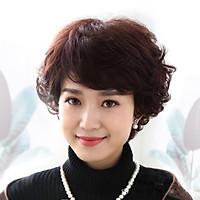 [ KÈM LƯỚI VÀ LƯỢC , T9209 ] Tóc giả nữ nguyên đầu cho người trung niên, tóc giả cao cấp cho người lớn tuổi, tóc giả cho người già, tóc giả Hàn Quốc, tóc giả có rãnh da đầu, tóc giả xoăn, tóc tém