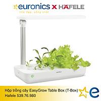 HỘP TRỒNG CÂY EASYGROW TABLE BOX (T-BOX)/539.76.980 - HÀNG CHÍNH HÃNG