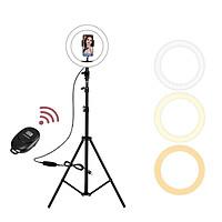 Full bộ đèn led hỗ trợ Livetream, Make Up, Tatoo, Studio 3 Chế Độ Sáng Điều khiển bằng Remote