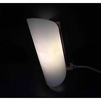 Đèn LED Gắn Tường 2,5W Rạng Đông Cao Cấp - Model: D GT06L CD/2,5W