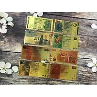 Bộ 8 Tờ Tiền HongKong Sưu Tầm TMT COLLECTION  Mạ Vàng B8THKMV