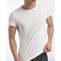 Áo lót nam có tay Cotton 100% mềm mịn co giãn tốt thấm hút mồ hôi mặc dễ chịu thoải mái