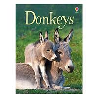Usborne Donkeys