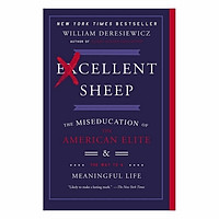 Excellent Sheep: The Miseducation Of The American Elite And The Way To A Meaningful Life