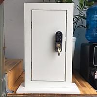 Khóa cổng thẻ từ - vân tay 2 mặt đọc thông minh SG-10BR ( Remote điều khiển từ xa)